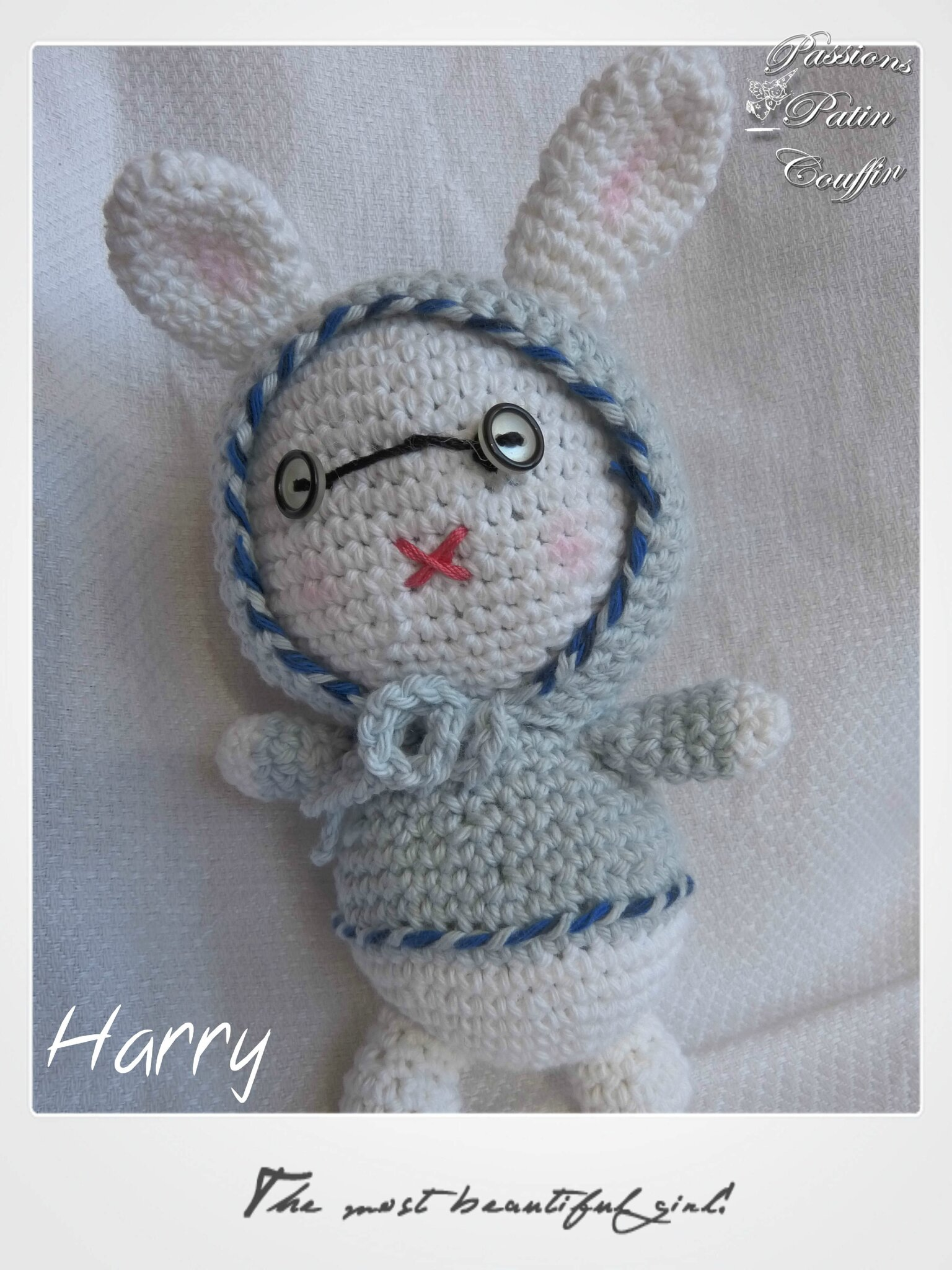 lapin harry