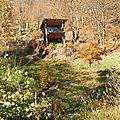 cabane audessus de l'étang