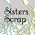 Promo chez les sisters scrap