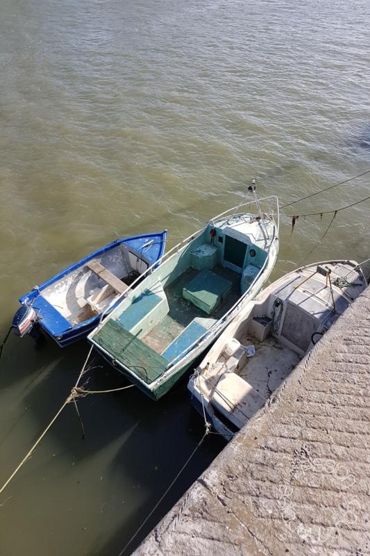 Baie de Somme_5