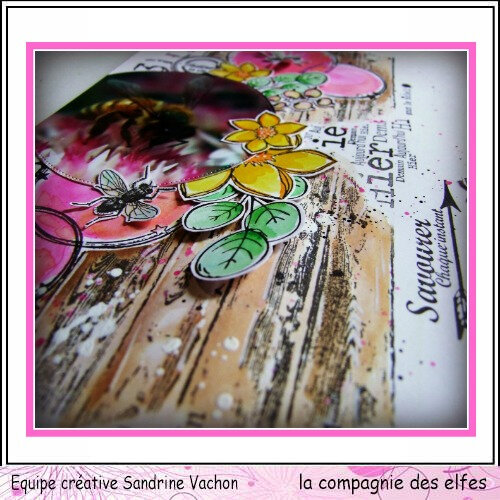 Page Sandrine VACHON dt LCDE avril (3)