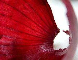 183159-stock-photo-nature-white-red-nutrition-macro-extreme-close-up-small