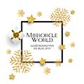 La rétrospective 2019 de mirrorcle world