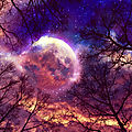 L'influence de la lune sur notre corps