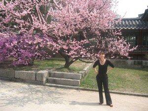 Gumi_et_Seoul_Mars_et_avril_135