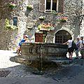 P1090028 fontaine décorée au début de la rue Gabriel Pérouse