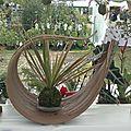 ensemble feuille de palmier kokedama - 34 euros