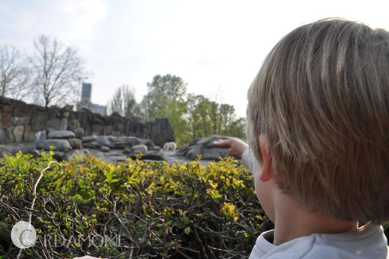 15 berlin zoo