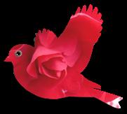 oiseau-vieux-papier10[fla)