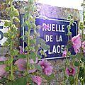 Juillet 2010 Mariage Blandine-Oléron-Gap 583_edited