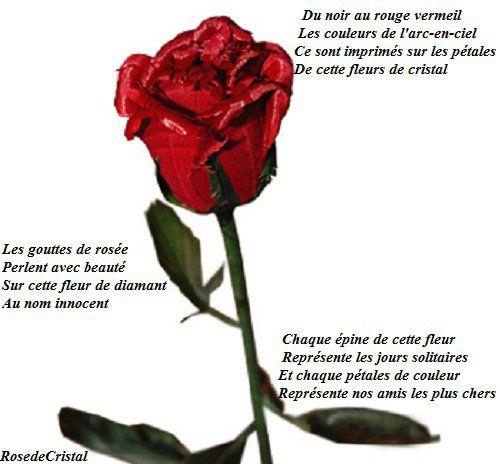 Premier Poème Les Poèmes De Rosedecristal