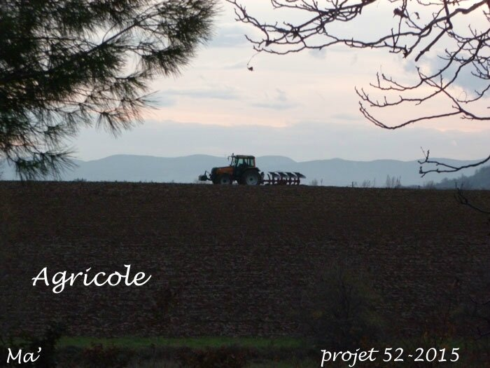 52-2015_S36_Agricole
