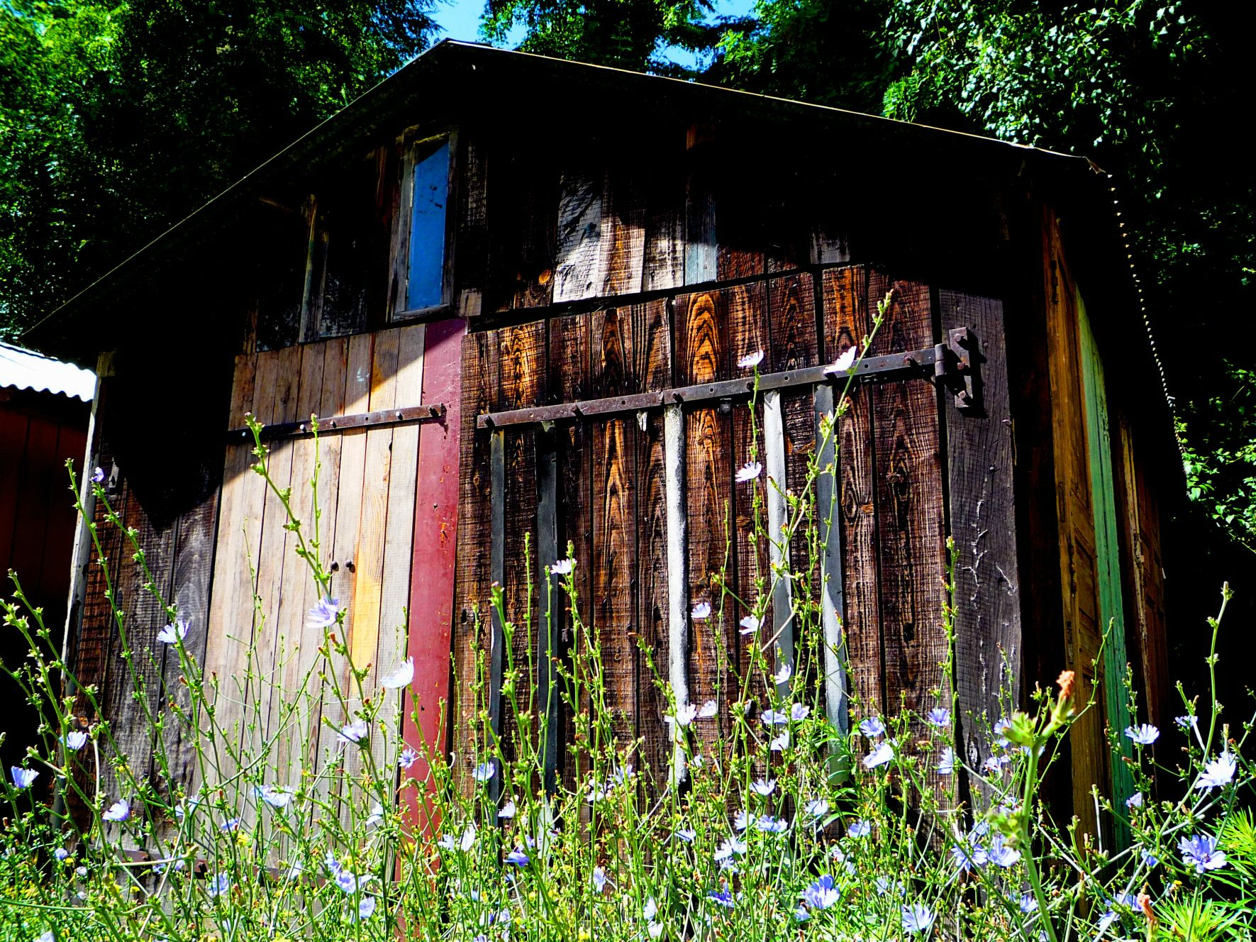 cabane aux bleuts