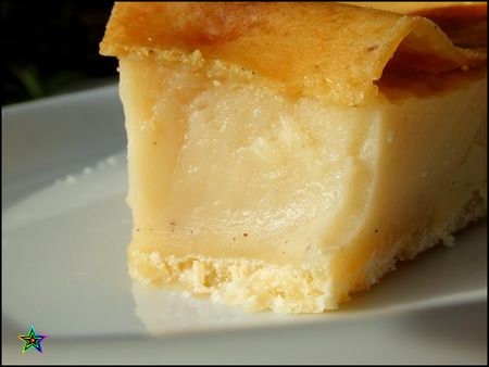 Terrine_mac_doine___thon___Flan_patissier_036ok