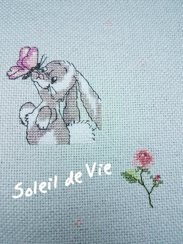 2017-plaid-accrosdufil-soleildevie-800