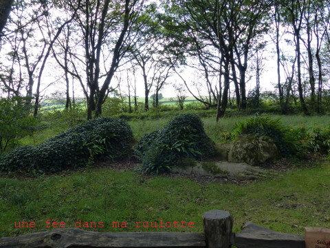 jardinsheligan2