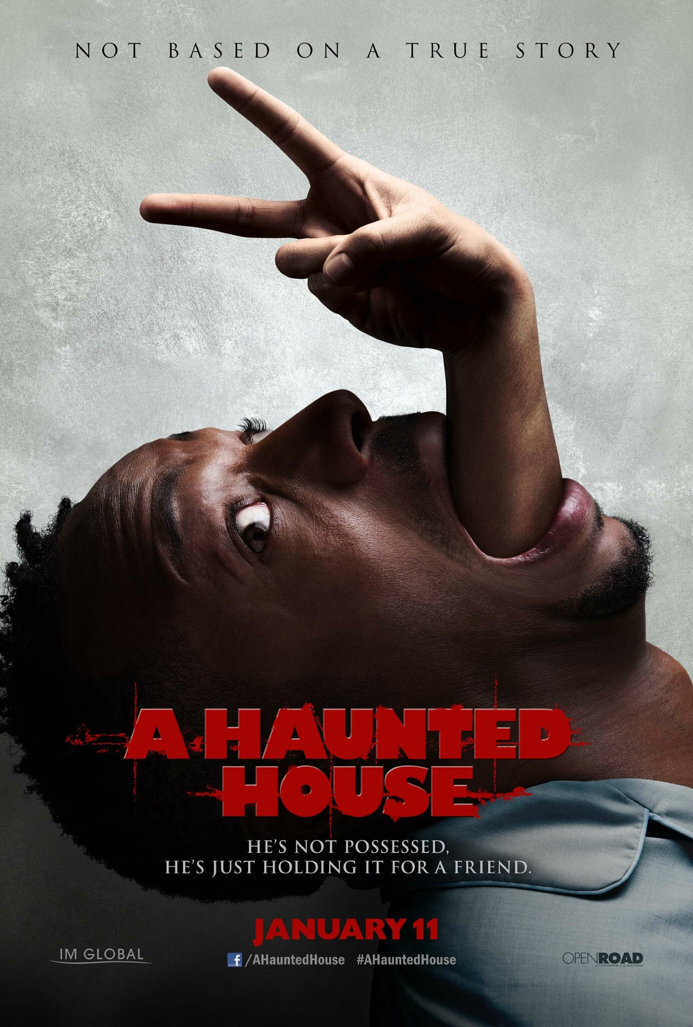 Affiche : A haunted house