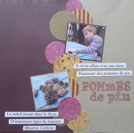 pommes_de_pin2