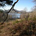 Lac d'Aydat en Hiver