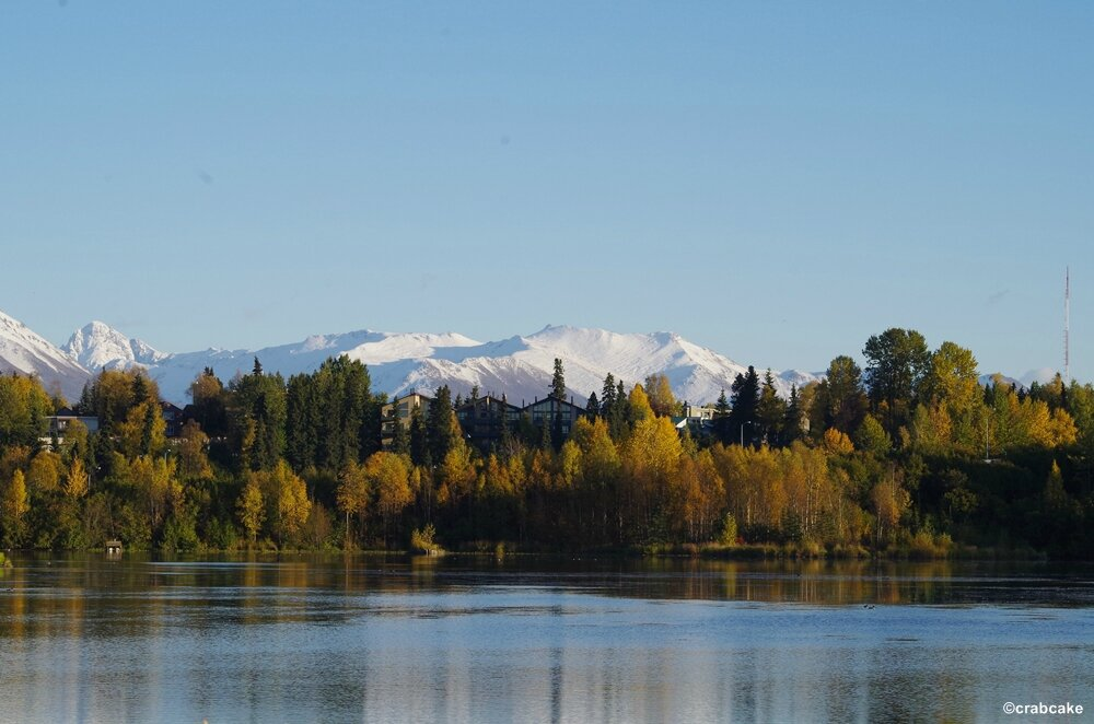 Anchorage 5