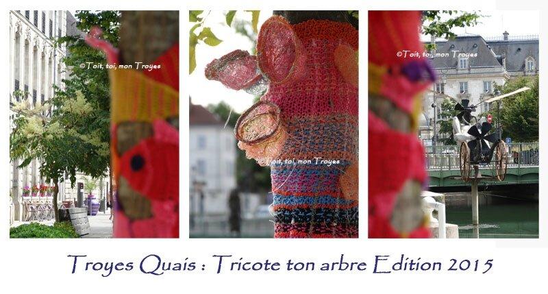 TROYES_Tricote-ton-arbre-2e-édition-suite