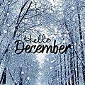 Bilan de novembre