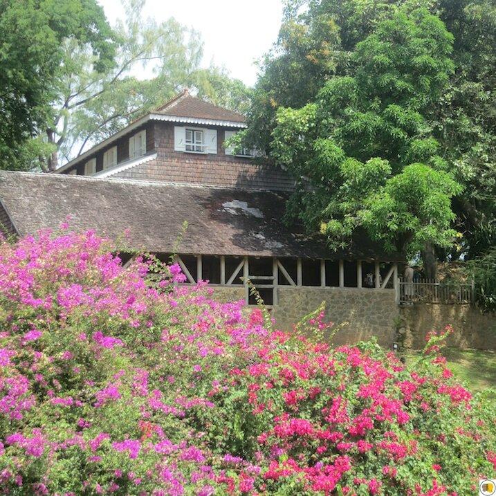 Habitation Clément (6)