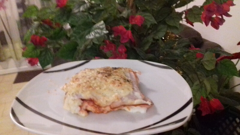 Croque lasagnes 21