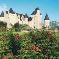 Le Château du Rivau et ses roses parfumées (37)