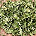 Poudre de feuille de séné(senna leaf powder)