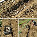 Culture de la pomme de terre 2ème étape