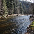2009 04 06 Un ruisseau vers Dunière