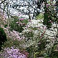vasterival au printemps