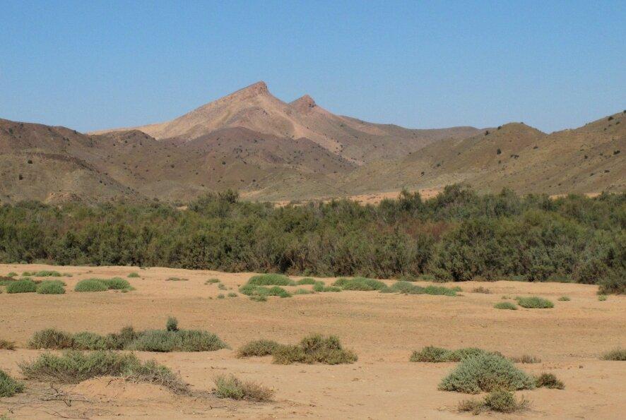 vallée du Draa