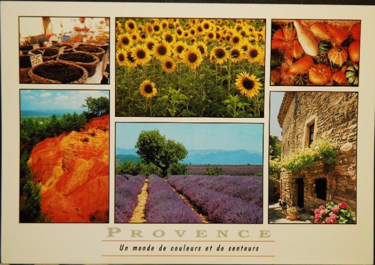 Provence, un monde de couleurs et de senteurs 1