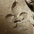 SAINT DENIS & les tombes royales 023