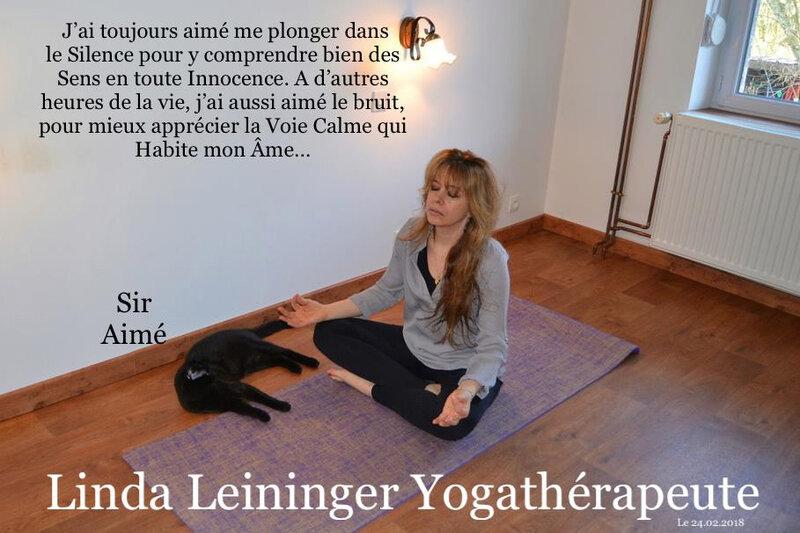 Linda Leininger - Linda Leininger naturopqthe - 4