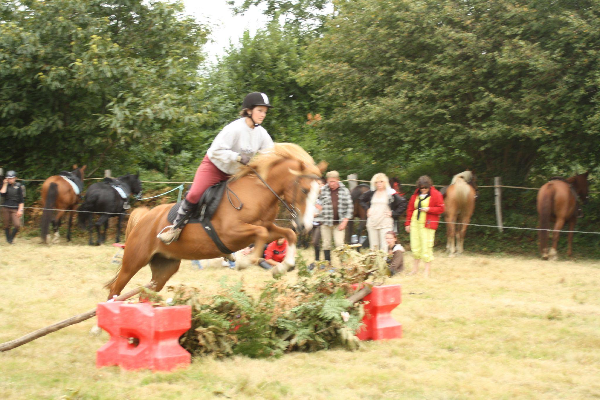 équitation de pleine nature - rallye équestre (184)