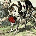 Les animaux pendant la grande guerre