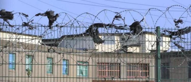 prison_2_0_1