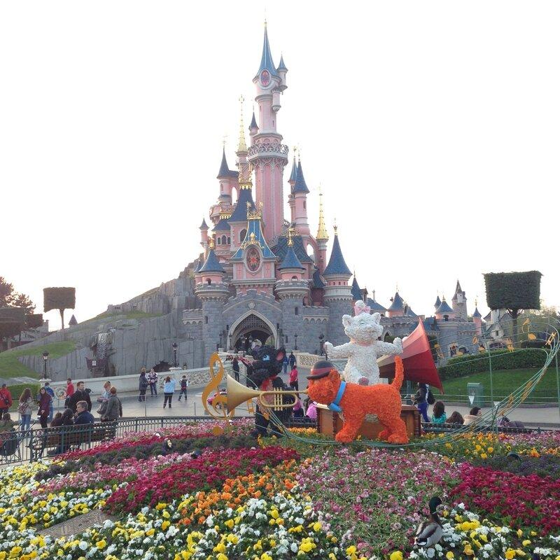 Chateau et les Aristochats