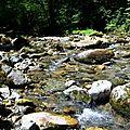 Un jour forêts d'Aspe Barétous, le 3 juillet 2012...