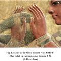Anatomie humaine - le membre supérieur - v - atlas (3)