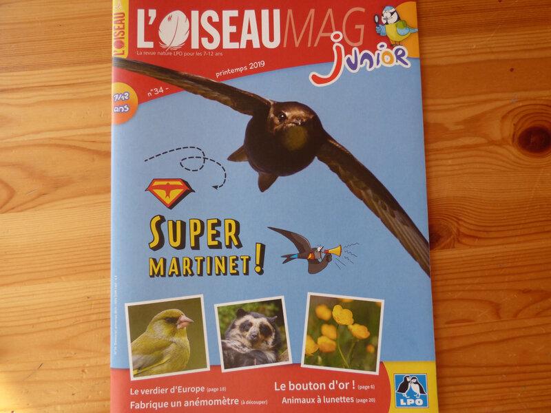 Oiseau Mag printemps 19 (1)