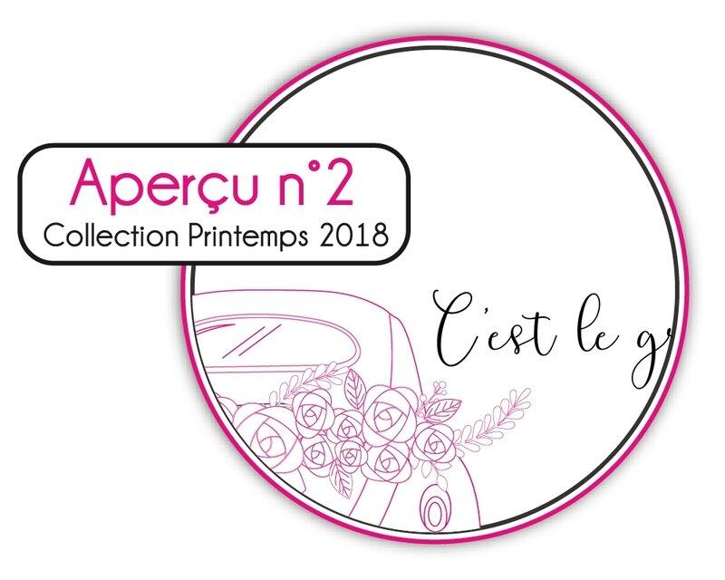 AperçuP18_2