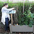 Prélévement dans les jardinières