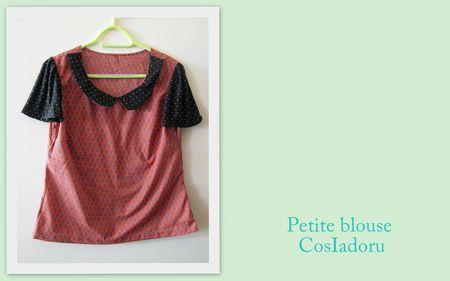 Petite blouse2