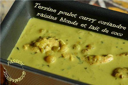 Terrine_poulet__curry__coriandre__raisins_blonds_et_lait_de_coco_1