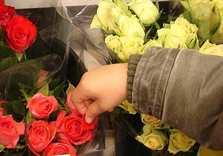mag_fleurs4