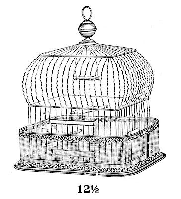 cage (0 0)